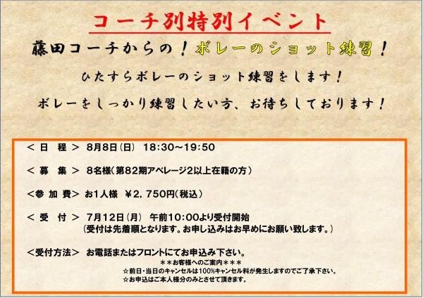 コーチ別特別レッスン(藤田)